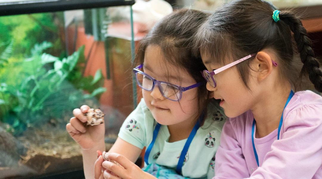D - Kidspace Children_s Museum
