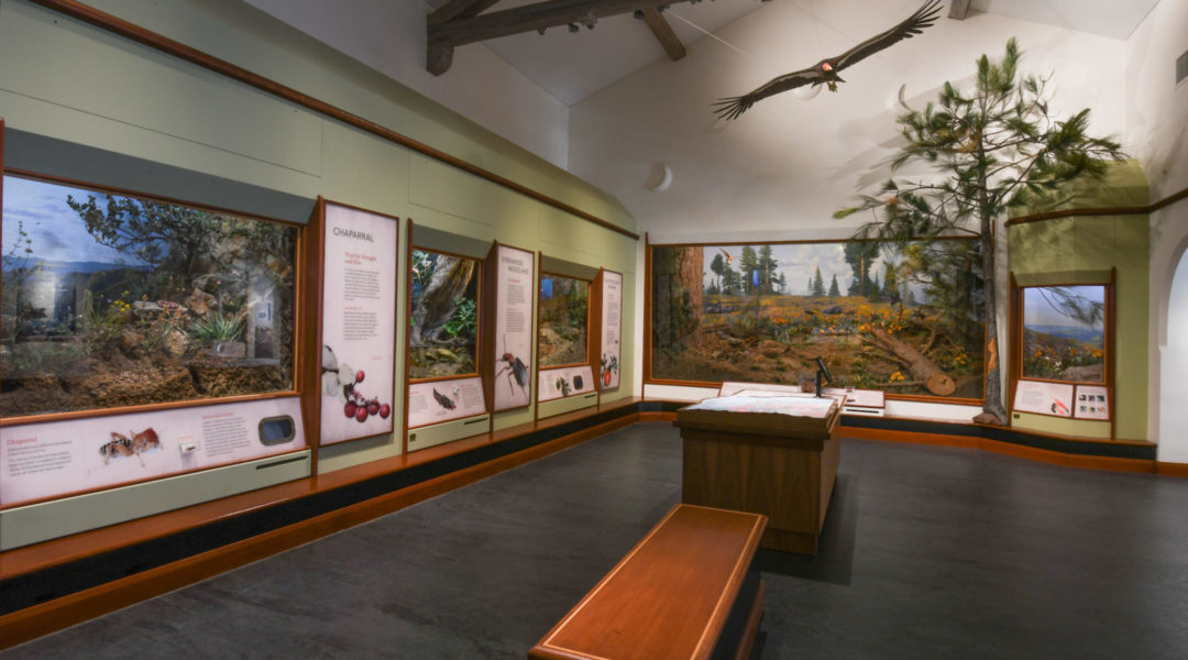 evergreen-museum-1300x6304 - Briana Sapp Tivey