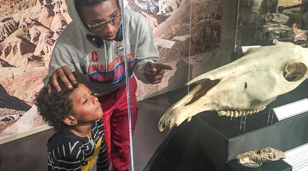 Massai and Asante Dinosm