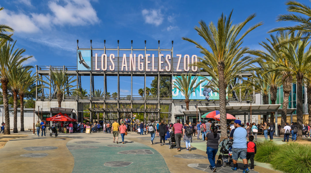 Cover Photo LA Zoo Entrance - Sienna Spencer